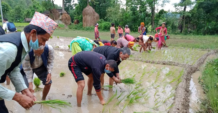 पुर्ब संचार राज्यमन्त्री बिष्ट जनता संग राेपाइ गर्दै